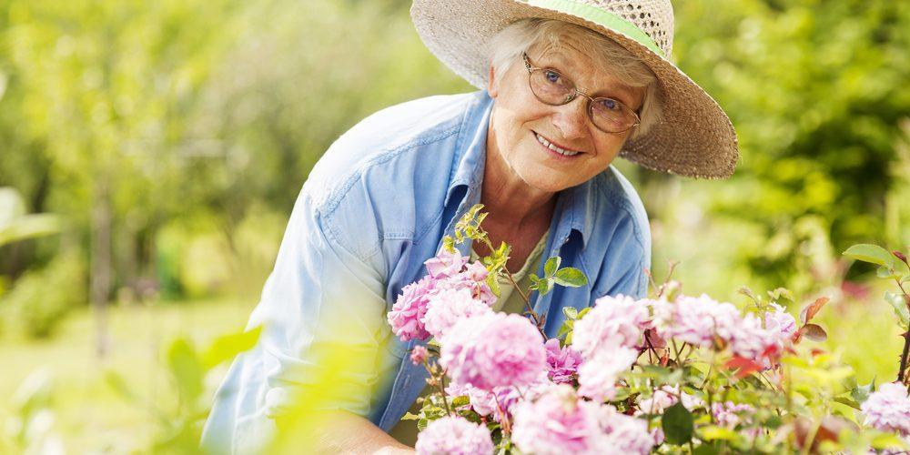 Seniors et jardinage